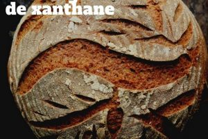 gomme de xanthane – quel et le problème